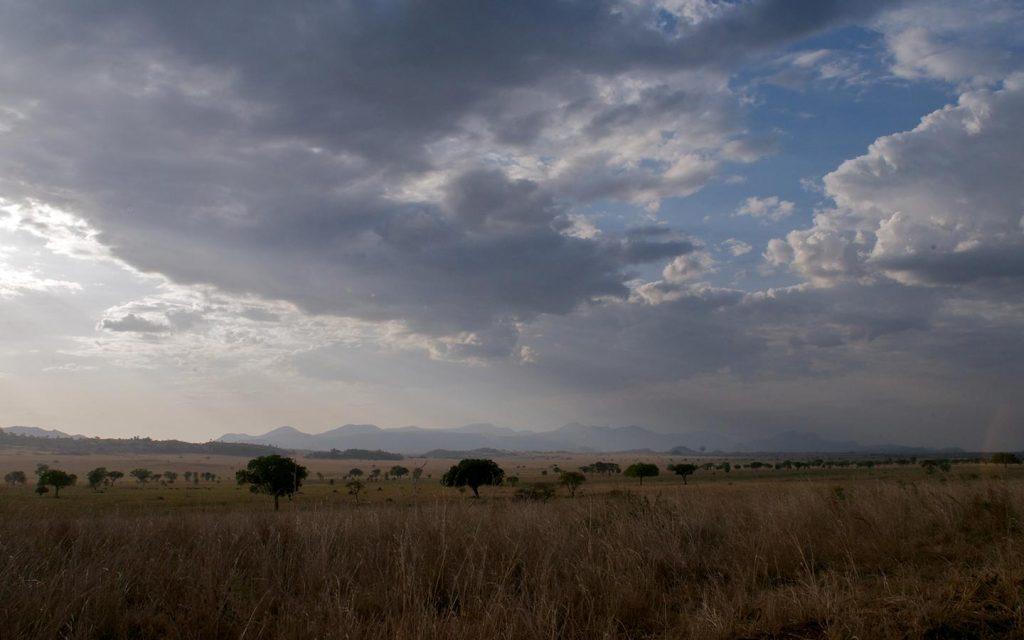 Narus Valley
